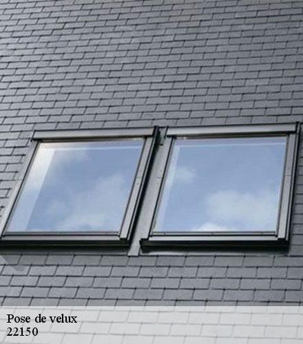 Pose de velux  plemy-22150